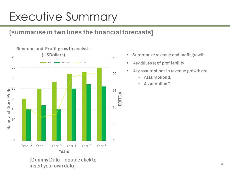 Executive Summary [summarise in two lines the financial forecasts]